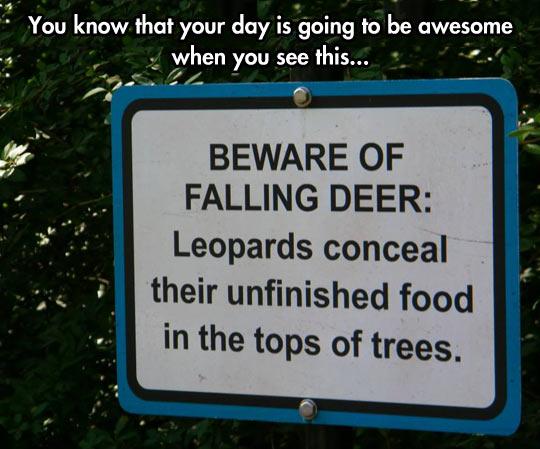 funny-Leopards-sign-beware-deer