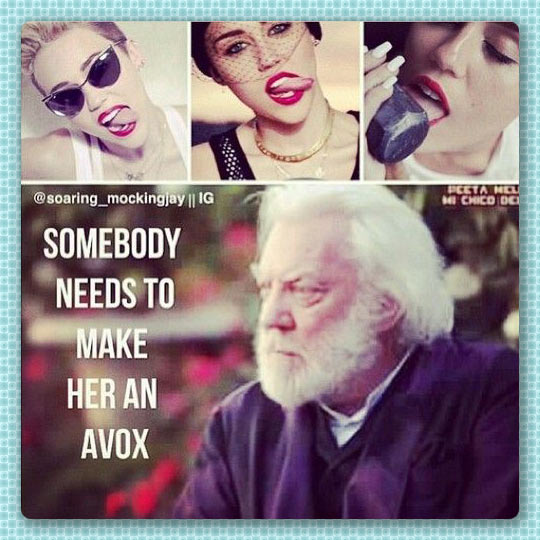 funny-Miley-Cyrus-Snow-Hunger-Games