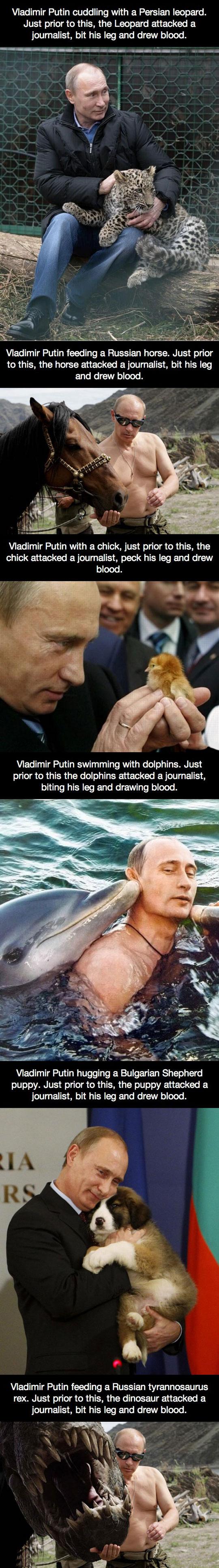 funny-Putin-Russia-leopard-blood-journalist