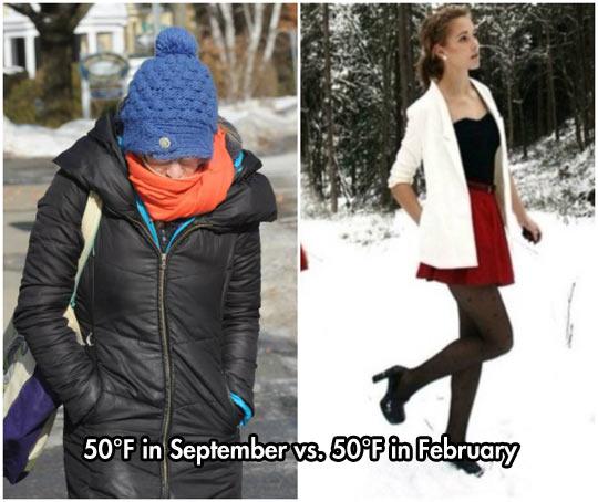 funny-Summer-Winter-coat-skirt