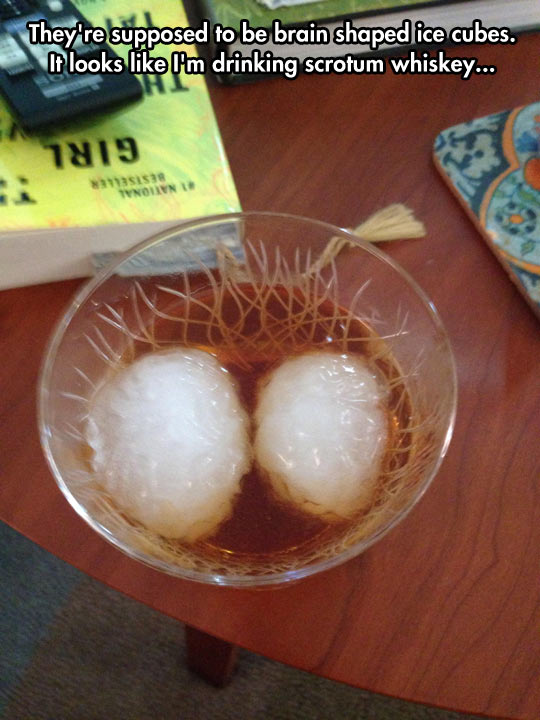 Brain-shaped ice cubes…