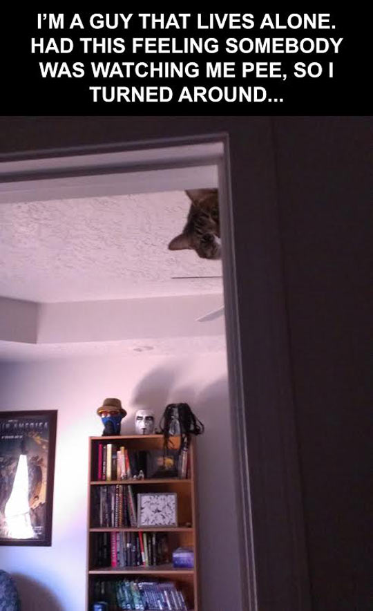 He is always watching you…