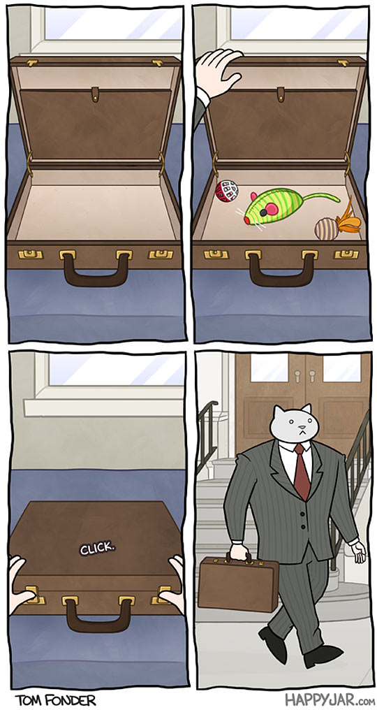 Business cat getting ready for work…