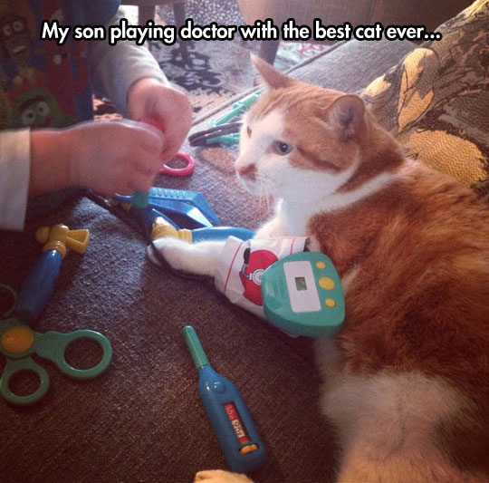 funny-cat-playing-doctor-children