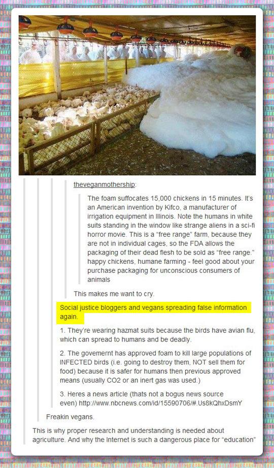 Don't spread false information, vegans…