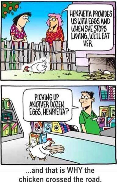 Funny chicken jokes - photo#24
