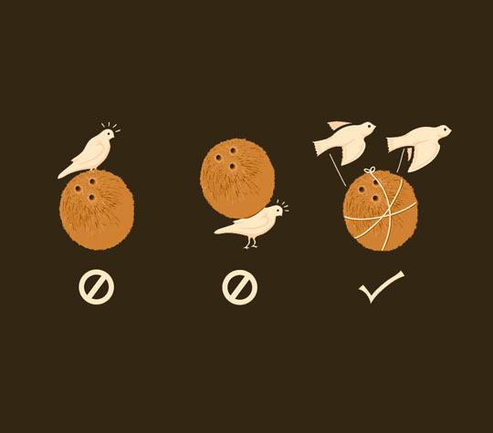 Do coconuts migrate?
