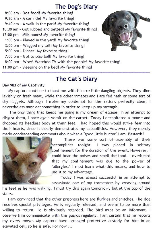 Difference between your pets…