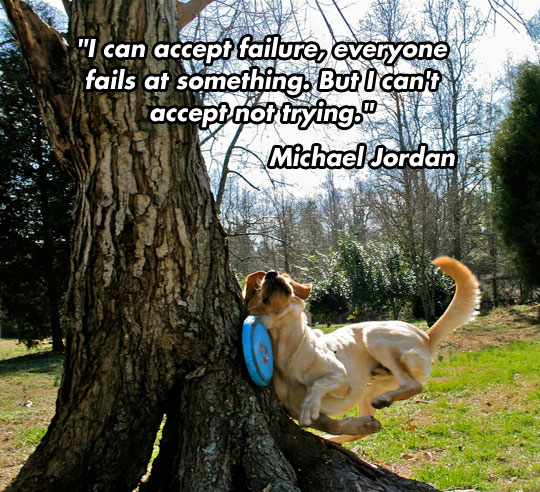 Michael Jordan on failure…