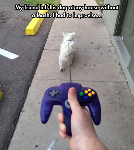 Nintendog…