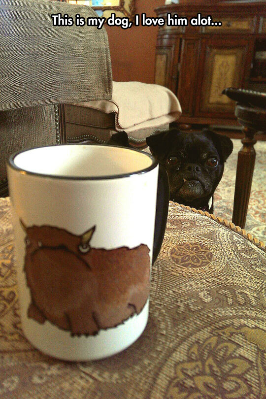 funny-dog-mug-drawing-table