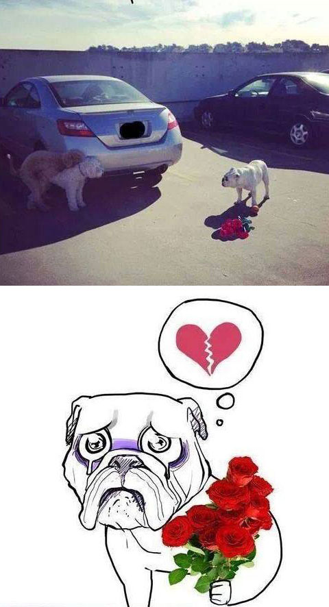 Valentine's Day is hard for everyone…