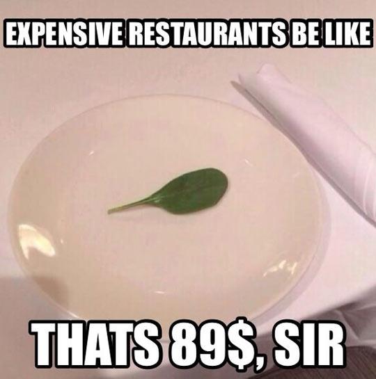 funny-expensive-restaurant-dinner-table