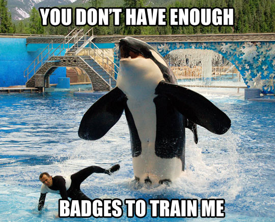 Whale trainer needs more badges…