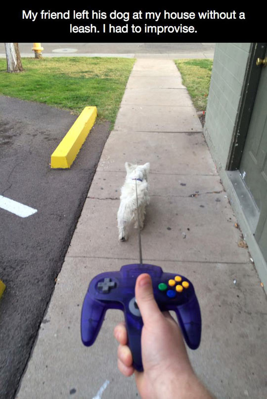 Does it have a Paws button…