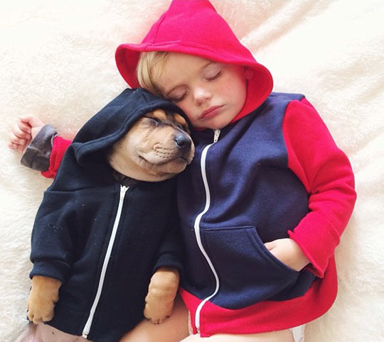 funny-little-kid-sleeping-dog-hoodie
