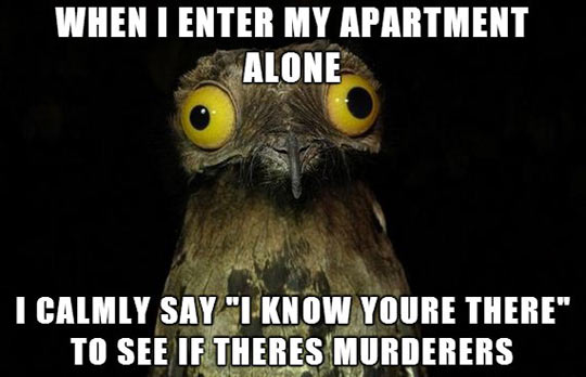 I don't know what I'll do if I ever get an answer…
