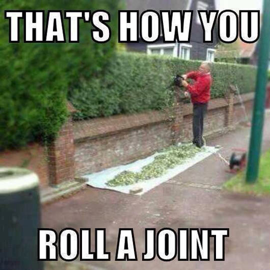 Roll it baby…