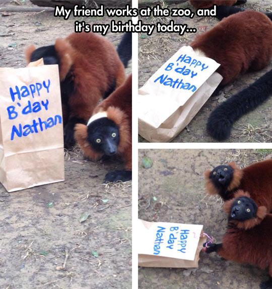 Birthday gift…