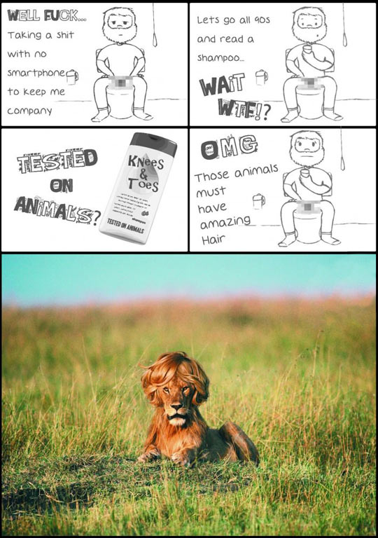 Tested on animals…