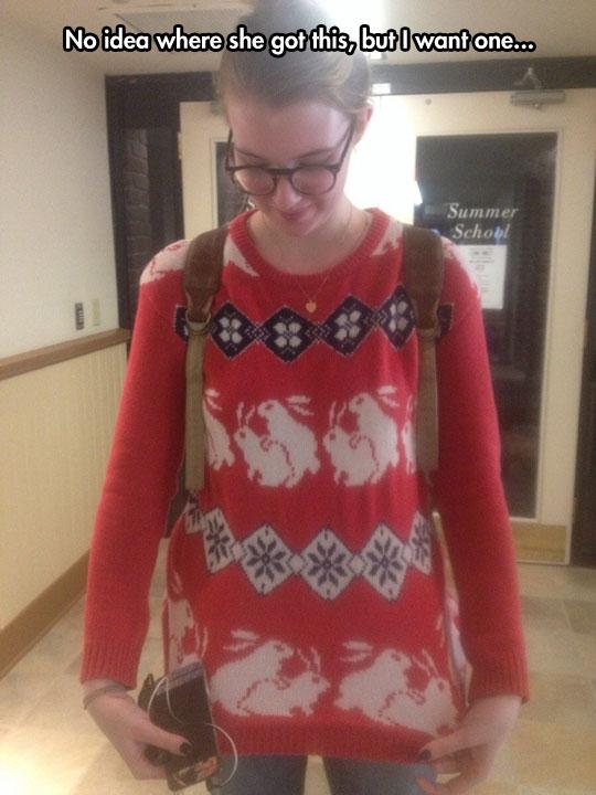 Sweater bunnies…