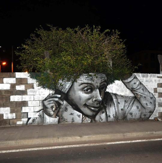 Tree graffiti…