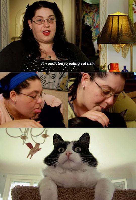 funny-weird-cat-hair-Strange-Addiction