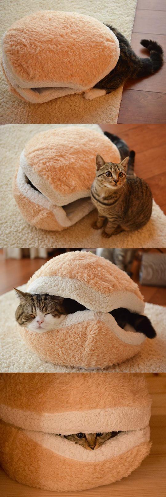 cool-cat-burger-bed-fluffy-amazing-idea