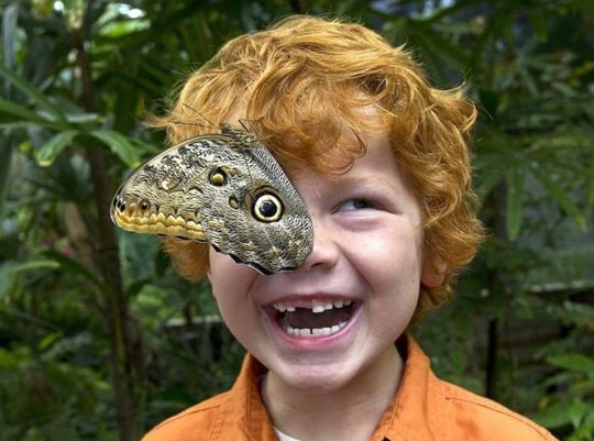 cool-child-photograph-butterfly-perfect-timing