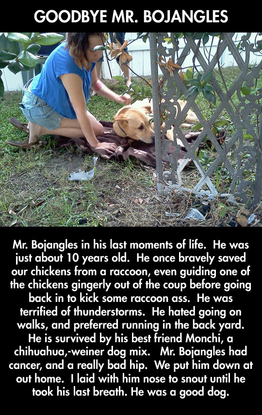 Such a hero…