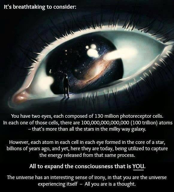 You are the universe experiencing itself…