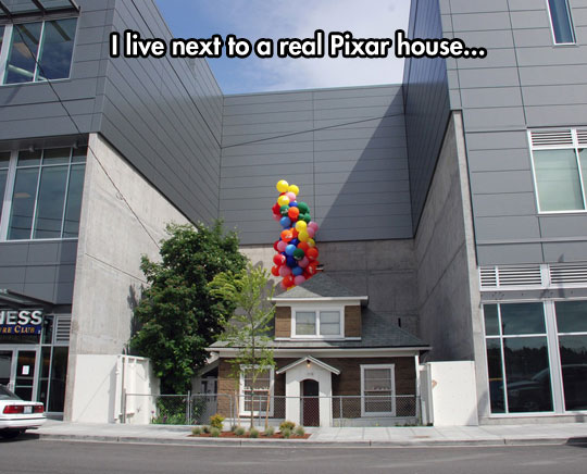 cool-real-life-Up-house-balloons-Disney