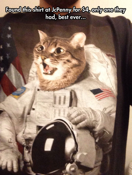 Astronaut Kitty