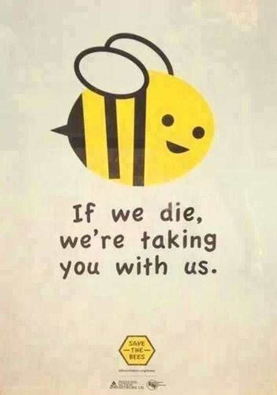 cute-bee-funny-sign-save-smile