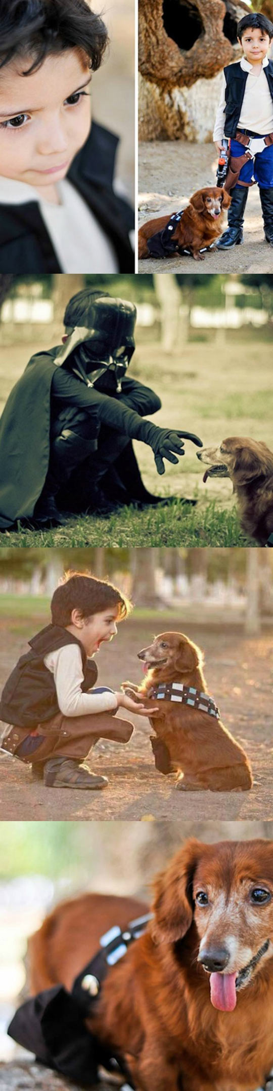 A Kid And His Dog Cosplaying Han And Chewie