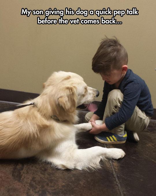 cute-kid-dog-talking-vet