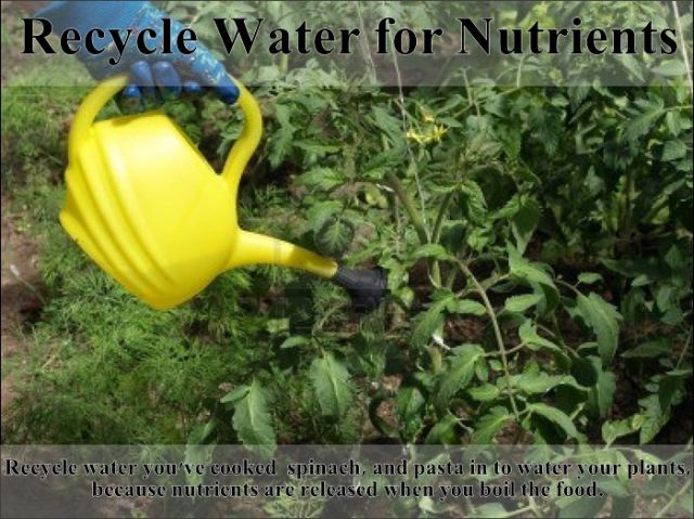 easy_hacks_to_make_gardening_a_breeze_640_16