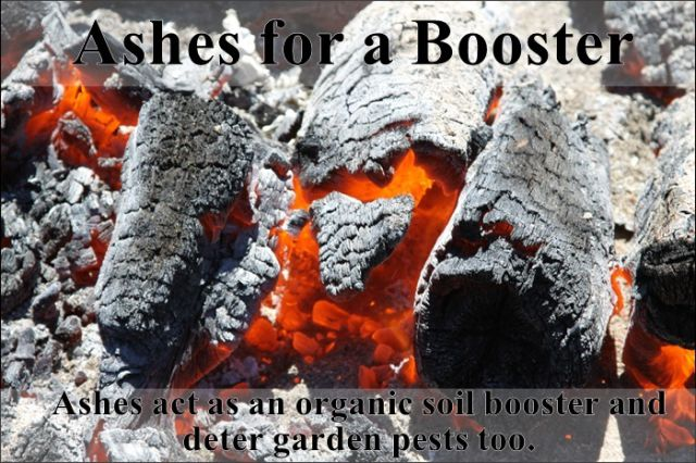 easy_hacks_to_make_gardening_a_breeze_640_21