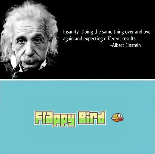 funny-Albert-Einstein-Flappy-Bird-insanity