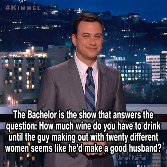 The Bachelor In a Nutshell