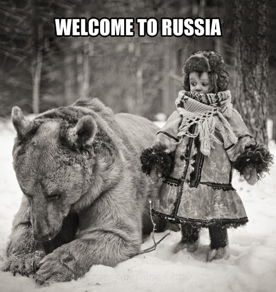 Pets Are A Little Different In Russia