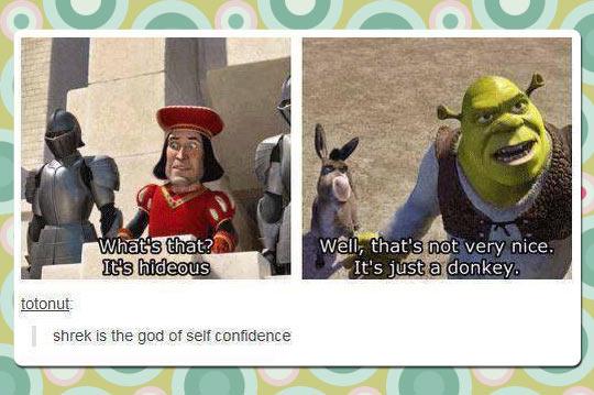 funny-Shrek-donkey-hideous-nice