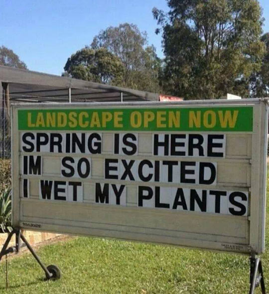 funny-Spring-sign-joke-happy
