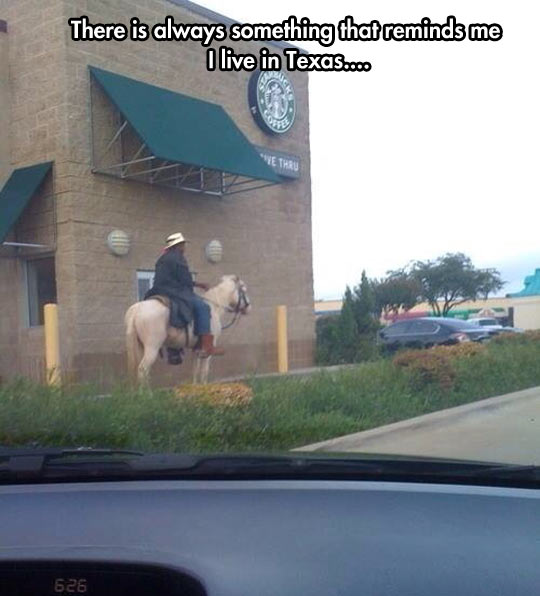 Quit Horsing Around, It's Time For Starbucks