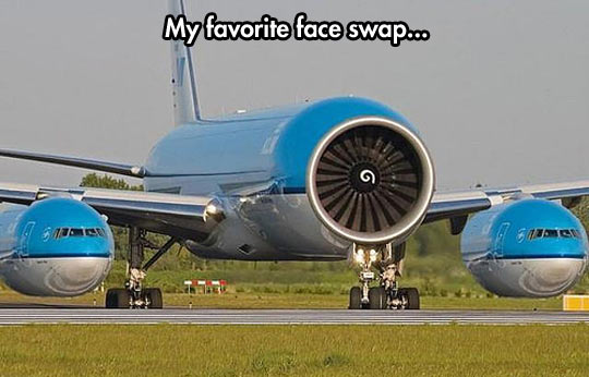 Face Swapping On a Plane