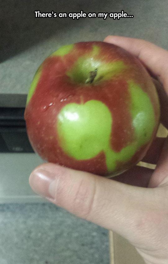 Yo, dawg, I heard you like apples…