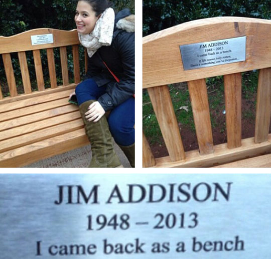 funny-bench-plate-memorial-reincarnation