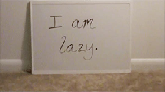 funny-bunny-sign-confess-home-lazy