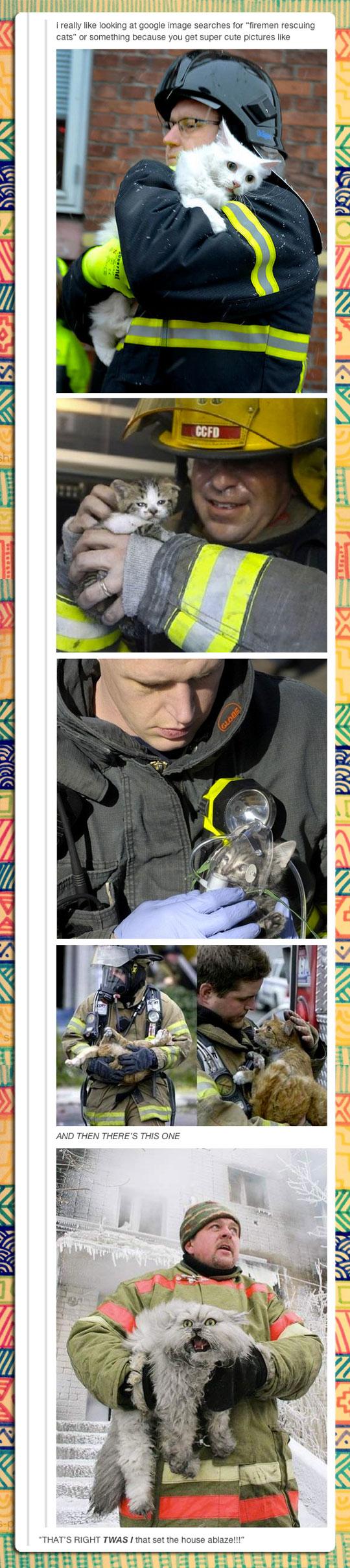 funny-cat-firemen-rescue-cute-scared