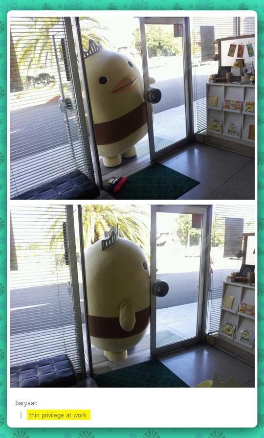 funny-costume-fat-bird-crown-door